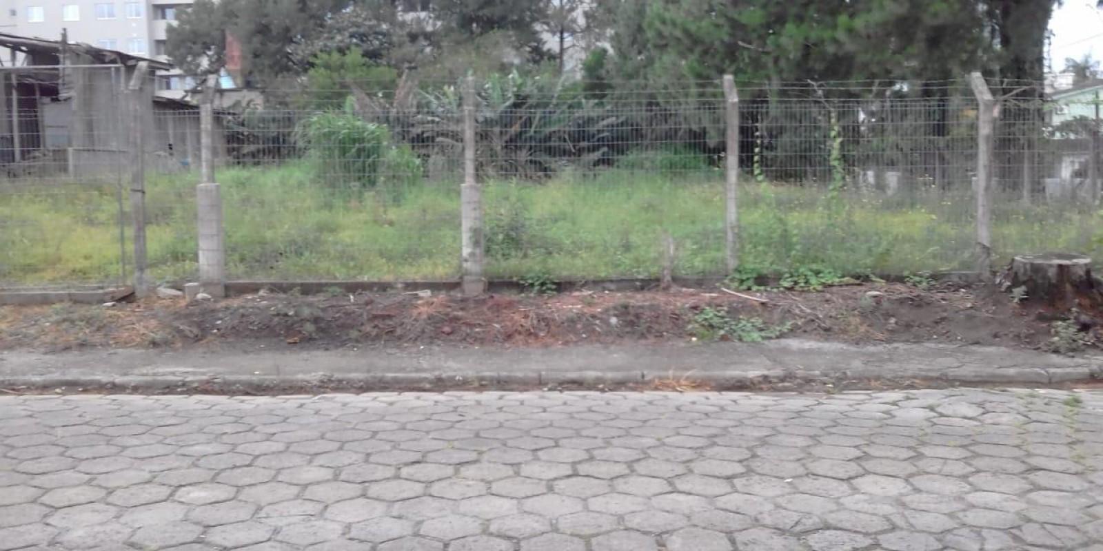 Terreno Pinheirinho